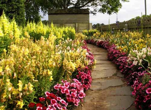 Zanimivosti in zadnje novice pri urejanju okolice vaše hiše in vrta