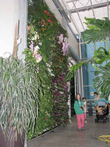 Botanični vrt in orhideje v Prekmurju IMG_2263