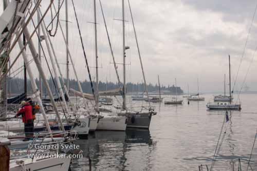 Jadrnice so na mirnem slovenskem morju čakale na veter in jadranje