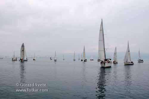 Jadrnice so lovile šibak veter v svoja jadra in se leno premikale po slovenskem morju